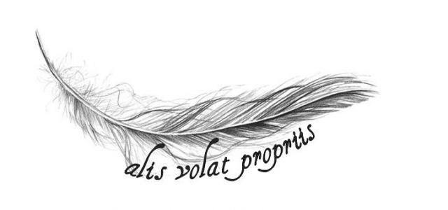 tatuaje de pluma y frase en latin