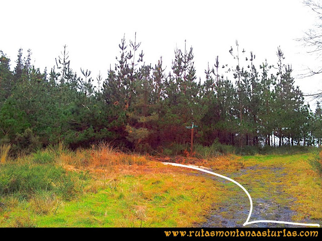 Rutas Montaña Asturias: Entrada a la zona de restos militares y acceso al Pico Pedroso
