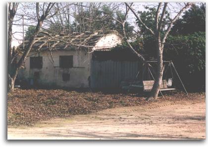 מבנה הרפת שהיה במשק שניצר