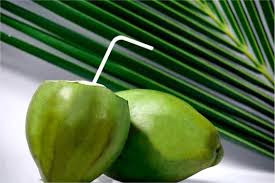 coconut water(naryal pani) health benefits in urdu