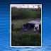 Criminosos explodem carro-forte e trocam tiros com seguranças na PE-180 Caso aconteceu no fim da tarde desta terça-feira (15) entre São Bento do Una e Lajedo. Homens fortemente armados em dois veículos e em cinco motocicletas interceptaram o carro.