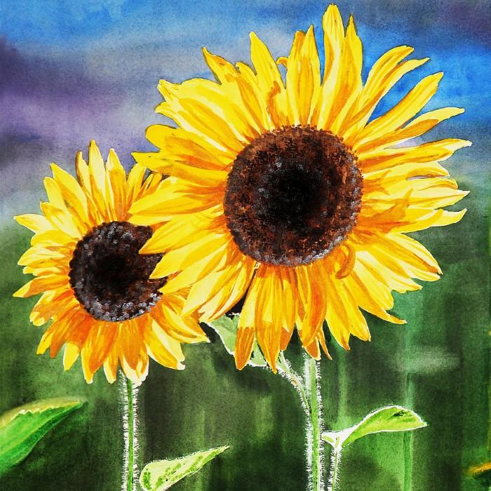 Акварельные рисунки цветов. Irina Sztukowski 9