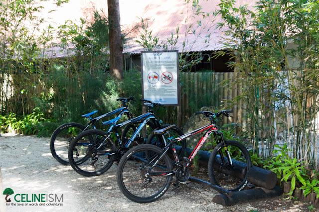 sumilon island biking trails