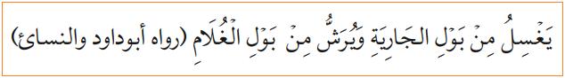 Hadis tentang Najis Mukhaffafah - kencing bayi laki-laki dan perempuan