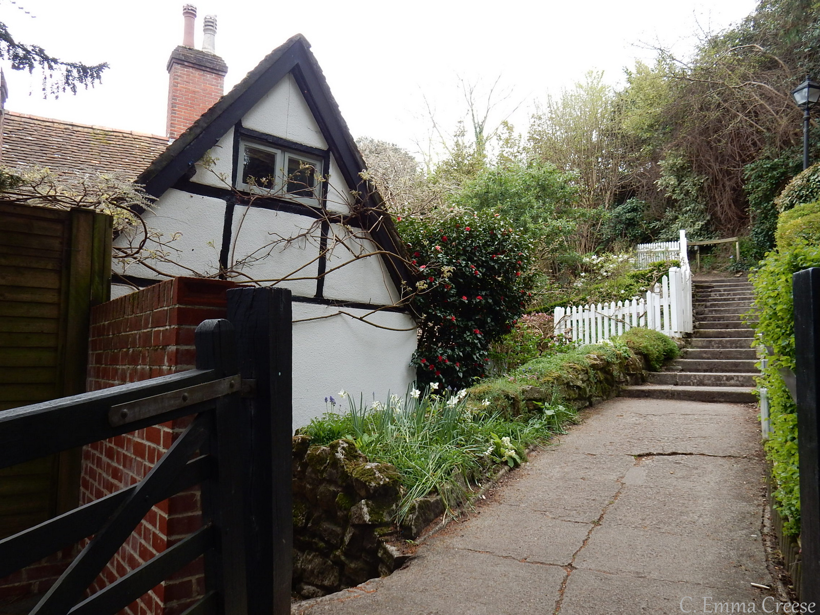 Hampshire Adventures of a London Kiwi