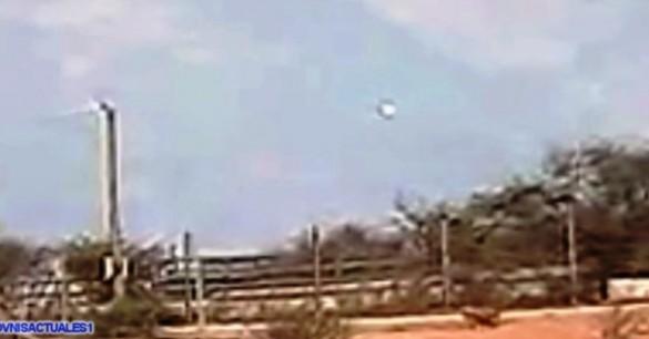 Alien mulai gila, pesawat UFO mereka mengejar-ngejar kawanan sapi