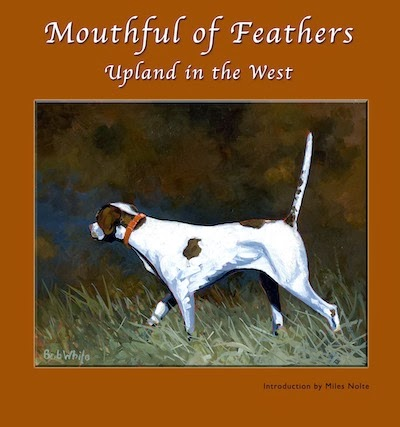 Mouthful of Feathers book cover