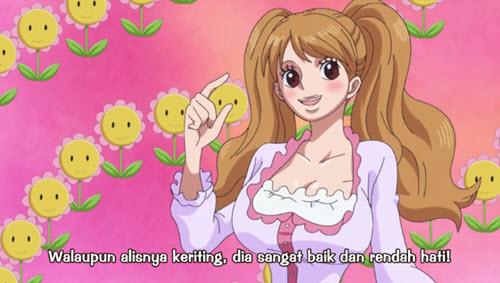 One Piece 787 Subtitle Indonesia