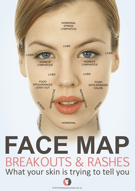 FACE MAP Breakouts & Rashes What your skin is trying to tell you by Jana Elston