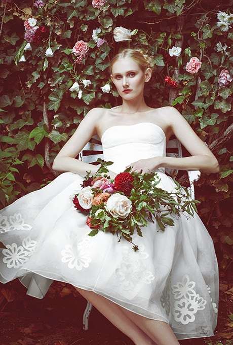 Why Buy A Discount Wedding Ceremony Gown?