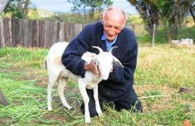 man to marry goat brazil church of satan