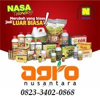 AGEN NASA DI Curup Rejang Lebong - TELF 082334020868