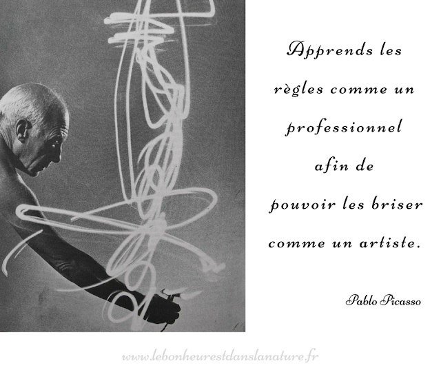 citation Picasso artiste