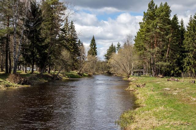 Rundweg im Säumermoor - Soumarské rašeliniště | Wandern im tschechischen Böhmerwald | Nationalpark Sumava | Soumarský Most | Wandern Šumava 10