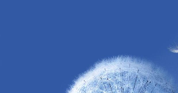 Wallpaper Para Samsung Galaxy S3, Mini. Fondos De Pantalla