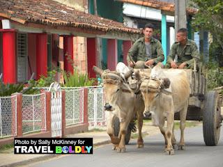 Oxcart Vinales, Cuba - TravelBoldly.com