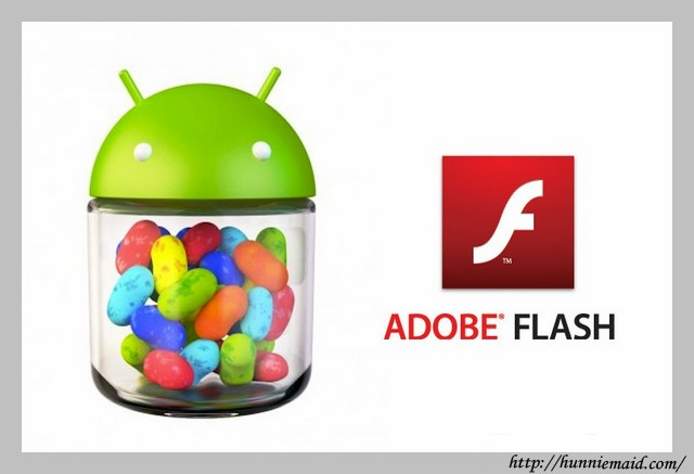 Adobe Flash Player 11.1 For Android