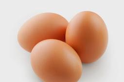 Prediksi Harga Telur Ayam Besok