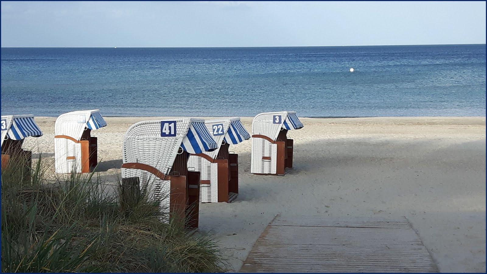 Epilog Monatsrückblick Juni 2020 oceanloveR Neuzugänge gelesen gehört Highlight Top Flop Statistik Warnemünde