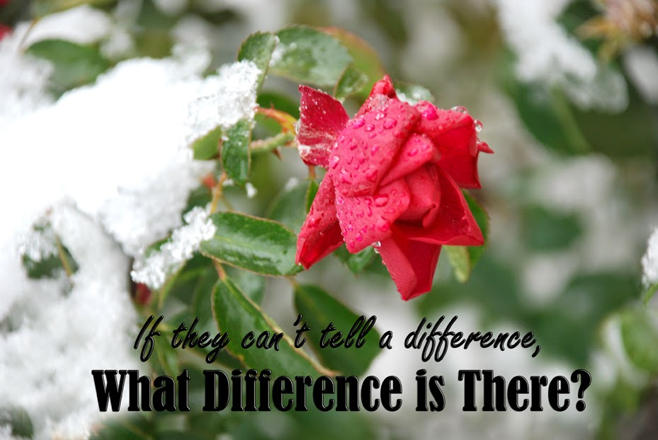 If they can't tell a difference, what difference is there?