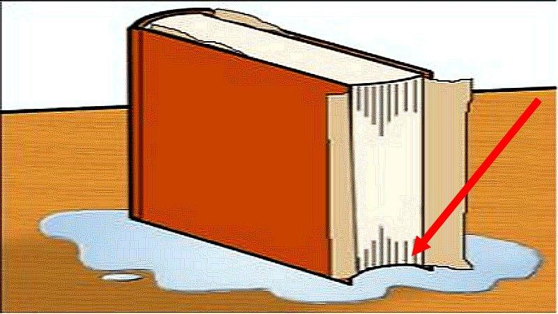 كيف تصلح كتاب مبلل بطريقة سهلة ؟