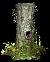 Tronco de Árvore em png