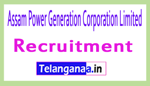 Assam Power Generation Corporation Limited APGCL Recruitment