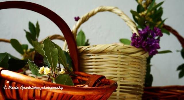 Ποντιακα Κάλαντα των Βαΐων, ένα έθιμο με διάρκεια στο χρόνο στο Θρυλόριο