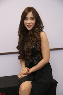 Angela Krislinzki in Transparent Black Gown at Rogue Movie Teaser Launch 1st March 2017 071.JPG