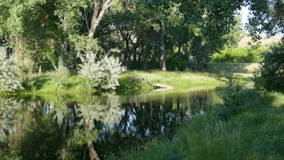 park, Medicine Hat, Alberta, natural area