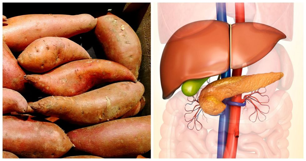 Sweet Potatoes,  Pancreas