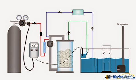 Calcium Reactors Part 1 What They Do How They Work And