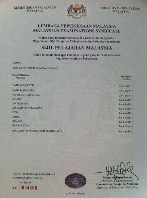 Essay report format pmr