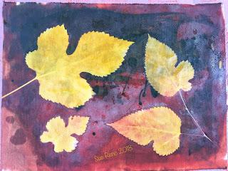 Solarfast prints_Sue Reno_ Image 19