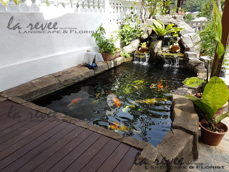 Professional koi pond and landscape contractor specialist for Fish pond specialists