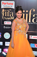 Keerthi in Orange Anarkali Dress at IIFA Utsavam Awards 2017  Day 2  09.JPG