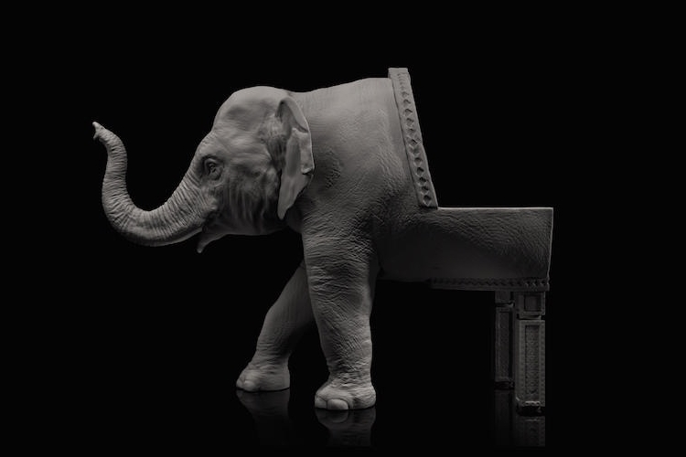 10-Baby-Elephant-Maximo-Riera-Animal-Shaped-Furniture-Chairs-and-Sofas-www-designstack-co