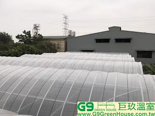 (18).簡易加強型溫室屋頂農膜結構覆蓋完成外觀