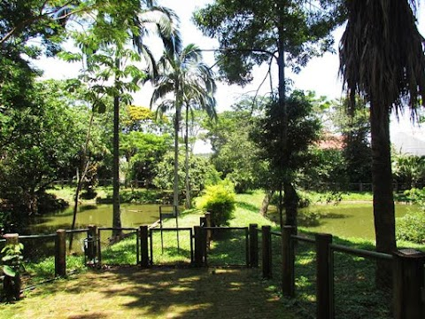 Zoológico Bosque Guarani - Foz do Iguaçu