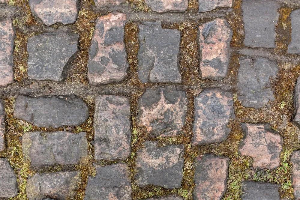 Trouée d'Arenberg Paris–Roubaix