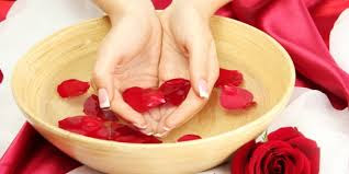 Manfaat Tumbuhan Mawar bagi Kesehatan Tubuh