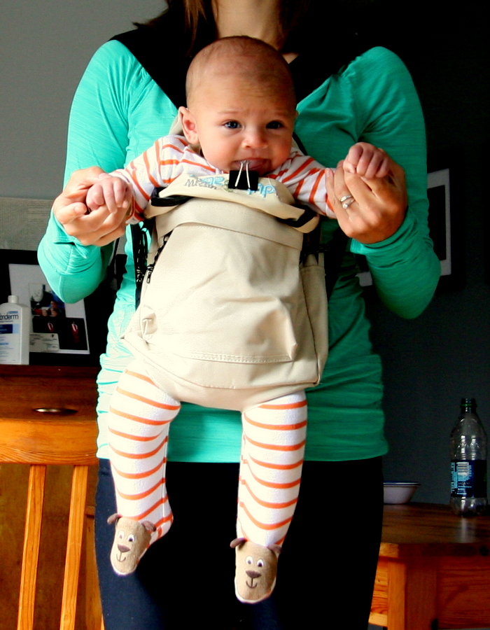 Full Of The Dickens Diy Baby Carrier Ii The Baby Backpack