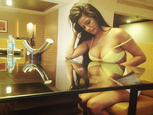 Poonam Pandey Hot and Sexy Photos Collection