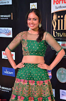 Nandita Swetha in a tight Green Choli Ghagra at IIFA Utsavam Awards March 2017 ~ 033.JPG