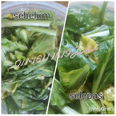 cara segarkan sayur