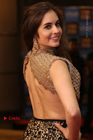 Actress Model Sarah Hopkins Latest Pos in Lehenga Choli at SIIMA Short Film Awards 2017 .COM 0156.JPG
