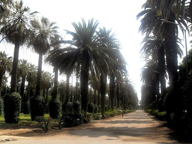 parque Casablanca