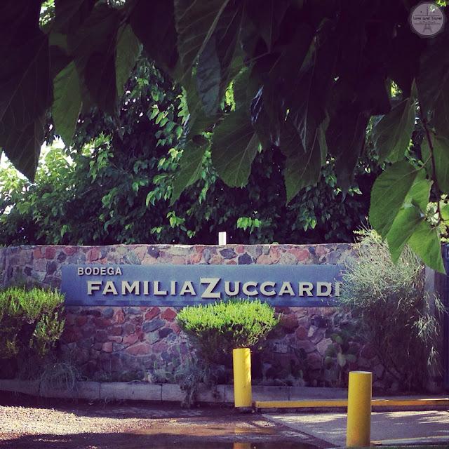 familia zuccardi mendoza maipu