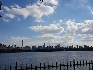 ny skyline from central park