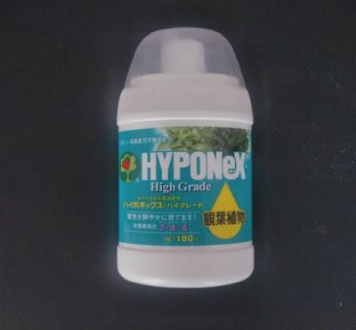 ハイポネックス観葉植物用